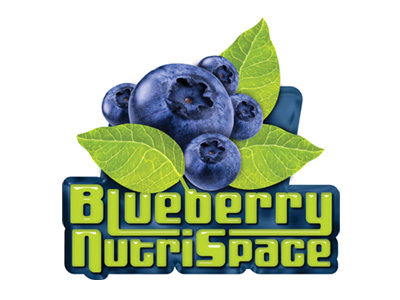 Blueberry, Logotipo 2D