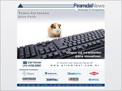 Piramidal, Newsletter  Animada em Flash, Cliente com Problema de Crédito